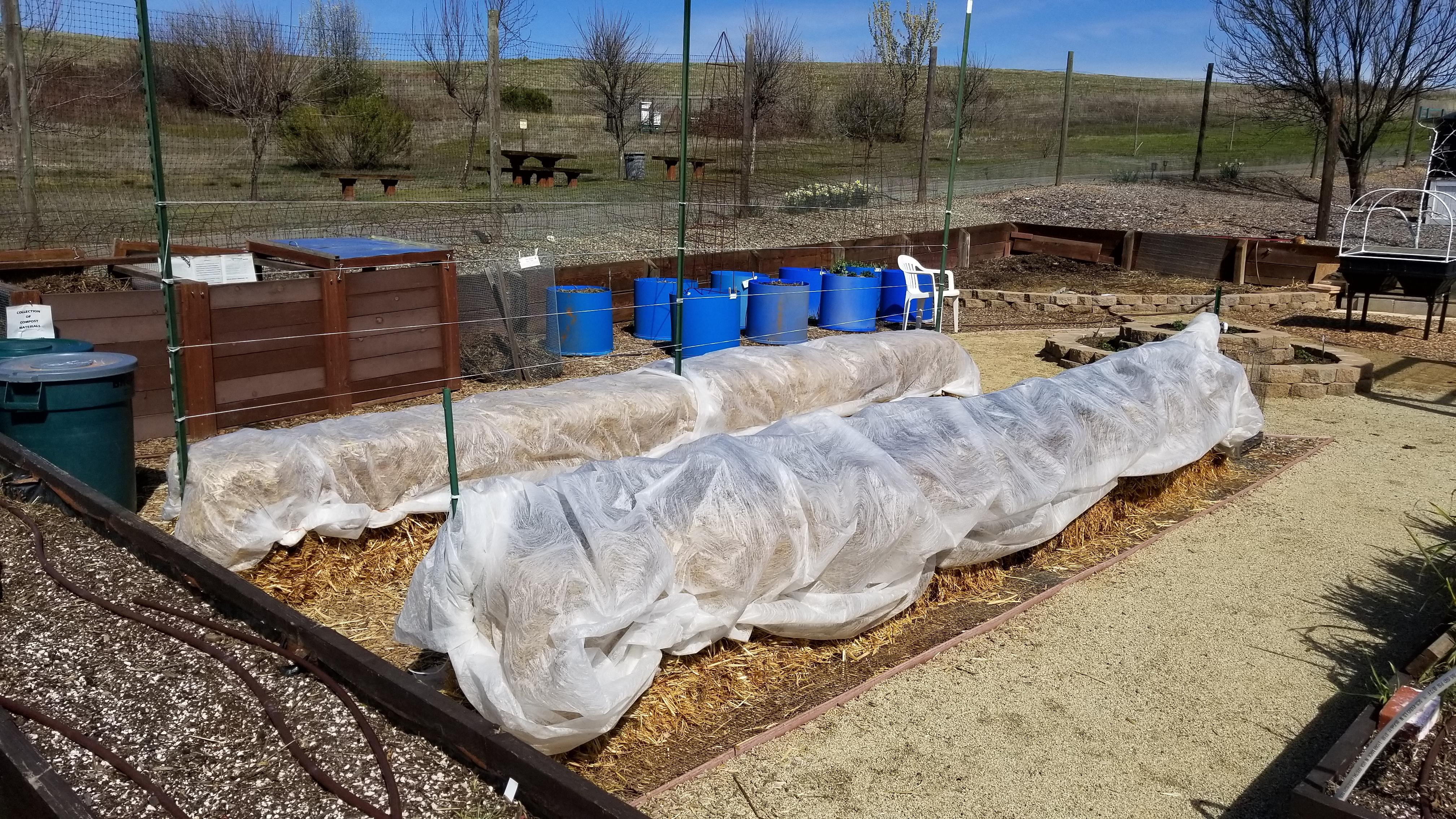 3-7-2018, The addition of row covers for weather and critter protection