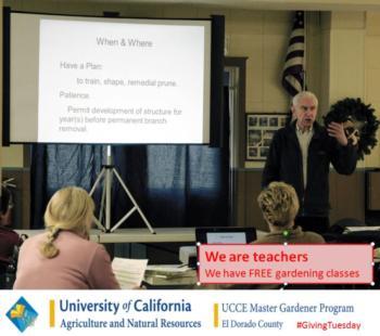 EDC We are teachers
