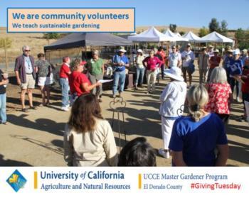 EDC We Community Volunteers