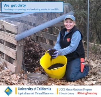 EDC We get dirty_Cindy