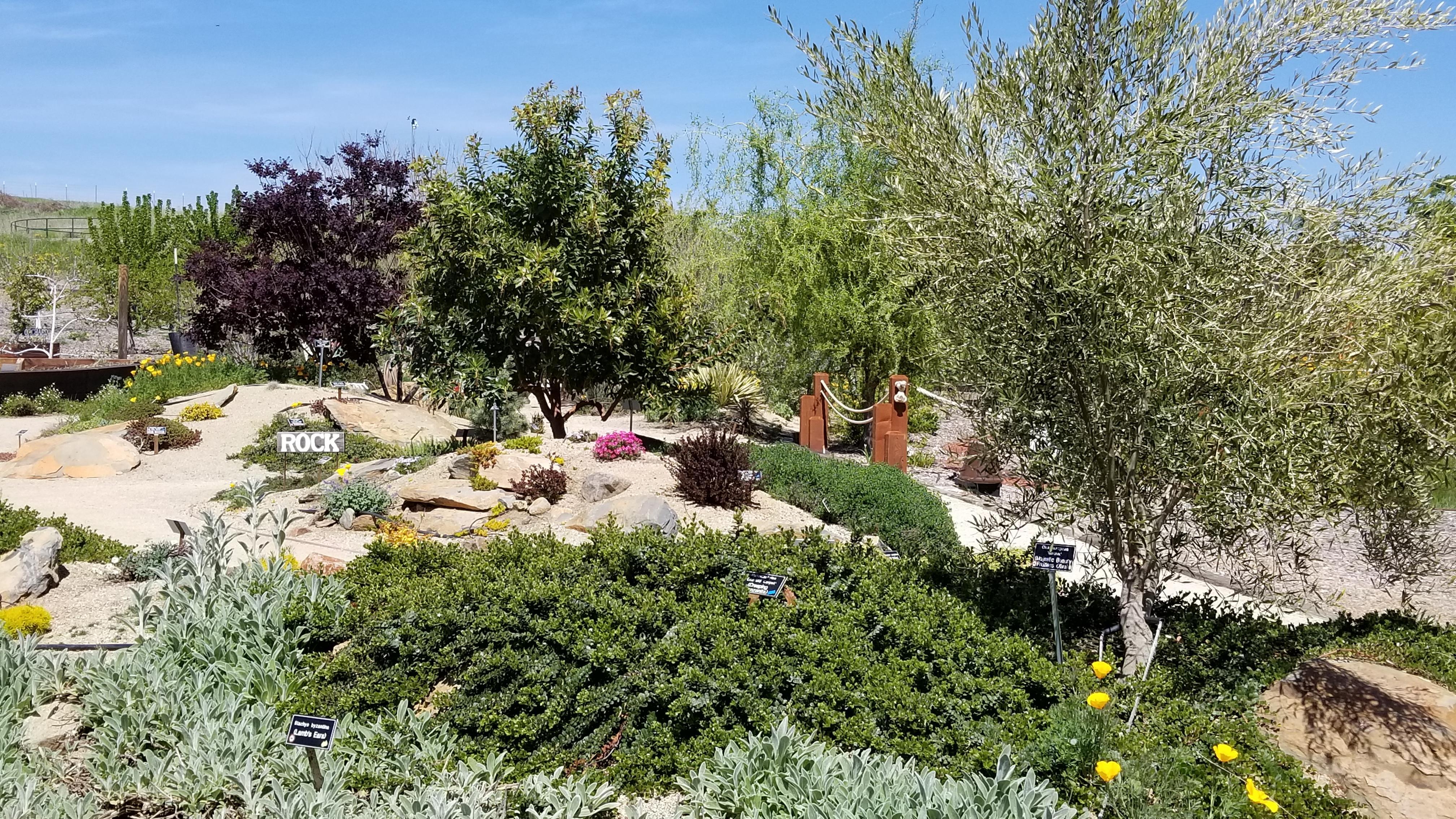 Rock Garden_20180424_142457